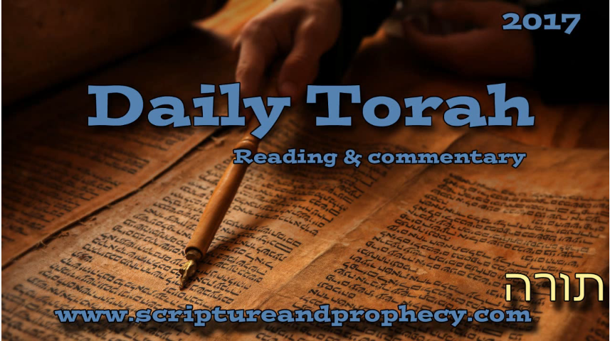 What Is The Weekly Torah Portion?